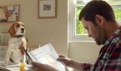 Beagle Life Insurance >> Beagle Street Uses Talking Dog In New Tv Advert Campaign
