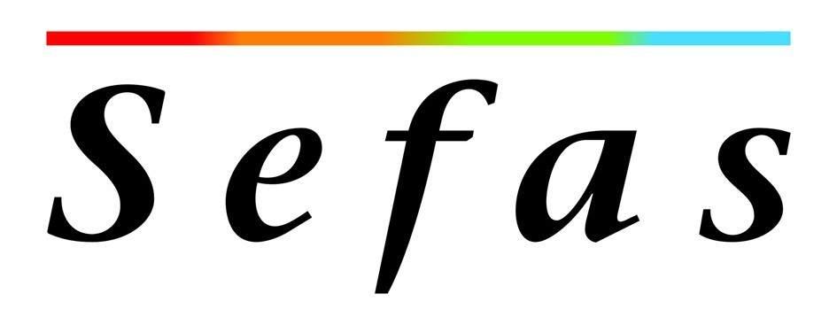 LogoSefas N3