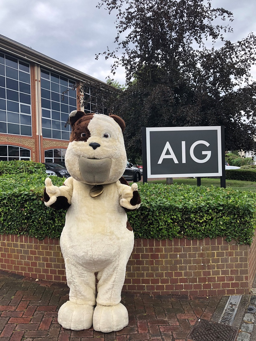 Direct Line Group and AIG collaborate to launch life ...