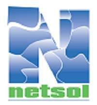 NetSol-Final-Logo-for-web.jpg