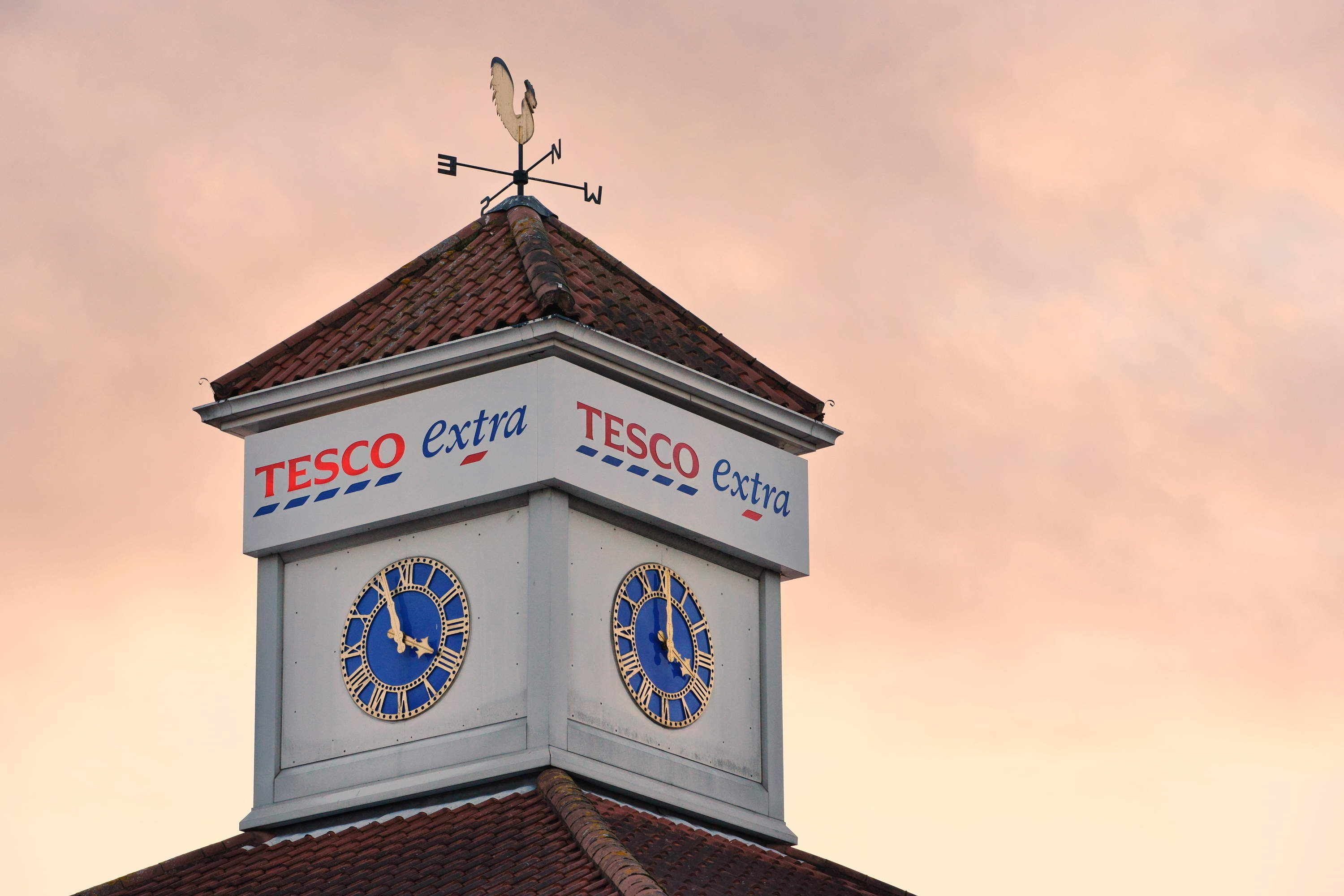 Why does Tesco want to buy a wholesaler?