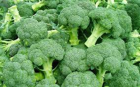 Scientists discover a way to grow broccoli anywhere, at any time — could other vegetables be next?
