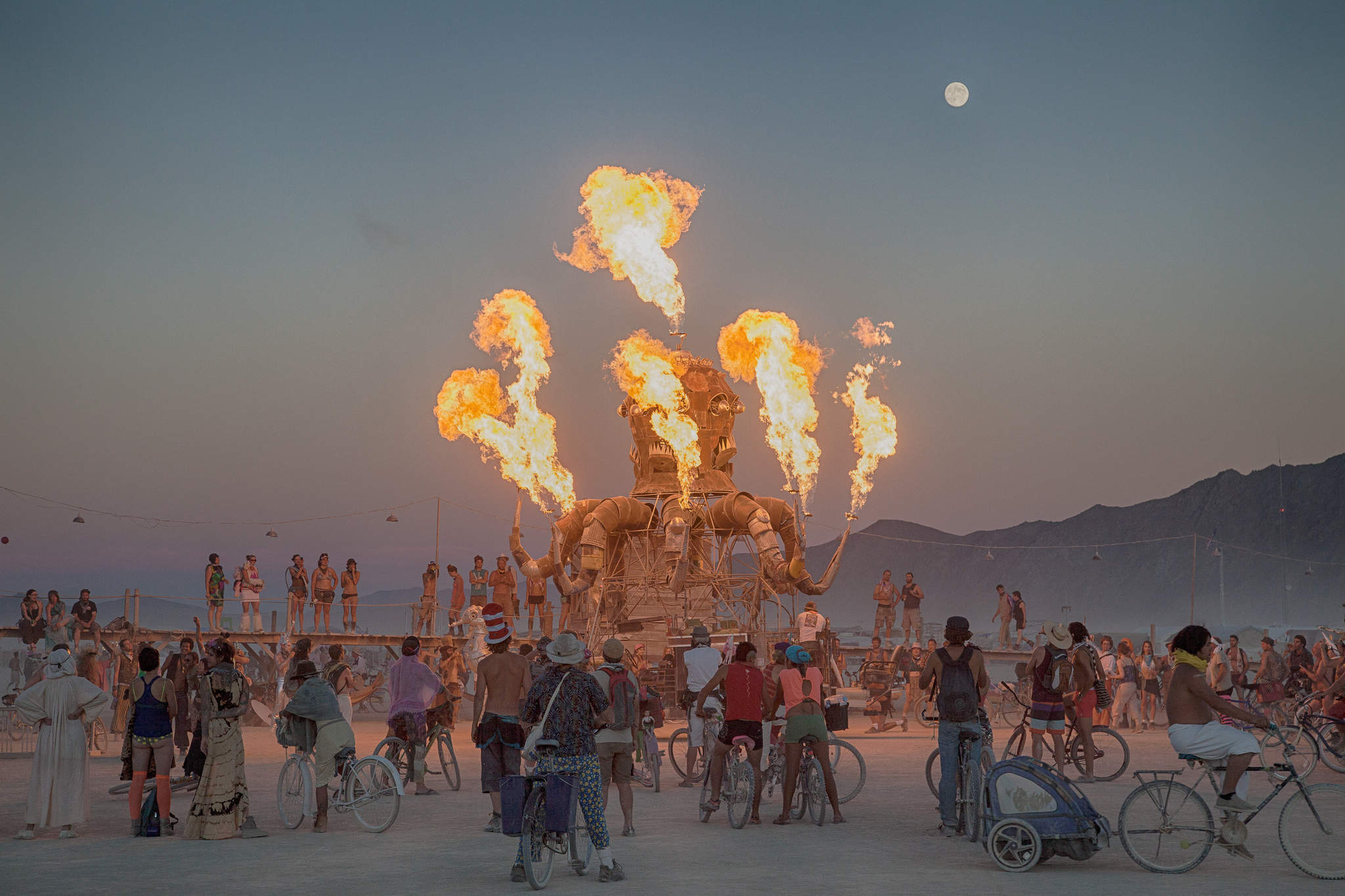 Celebrities at Burning Man - Verdict