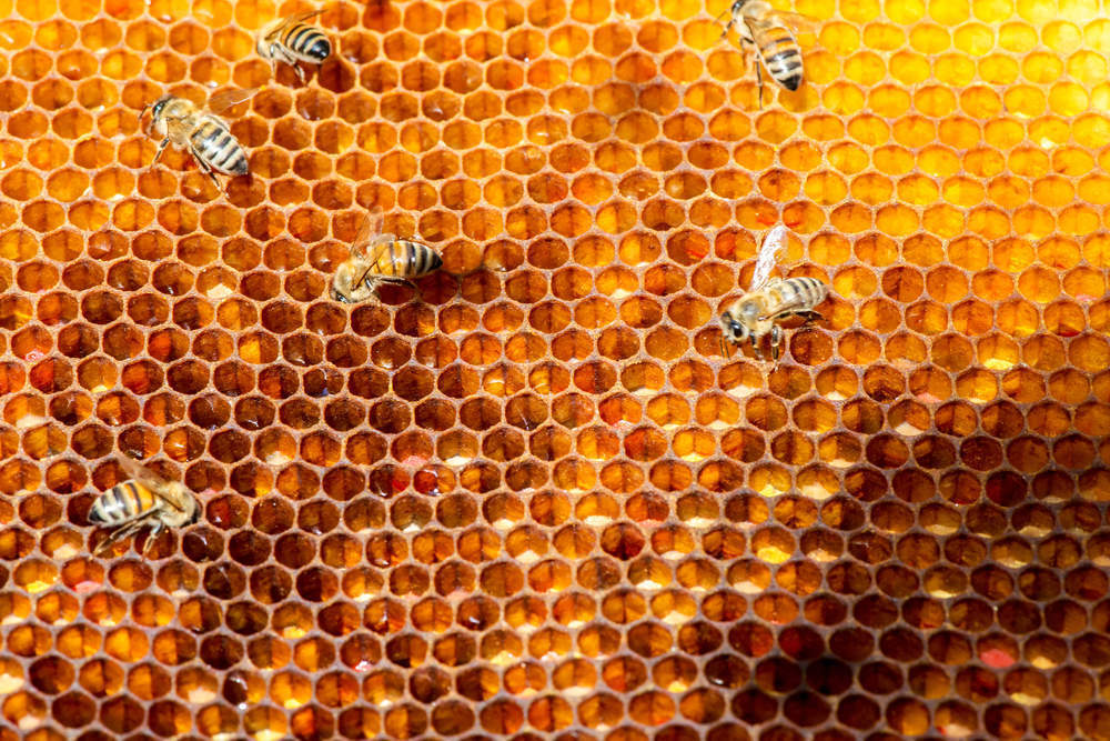 Is the buzz around honey water here to stay?