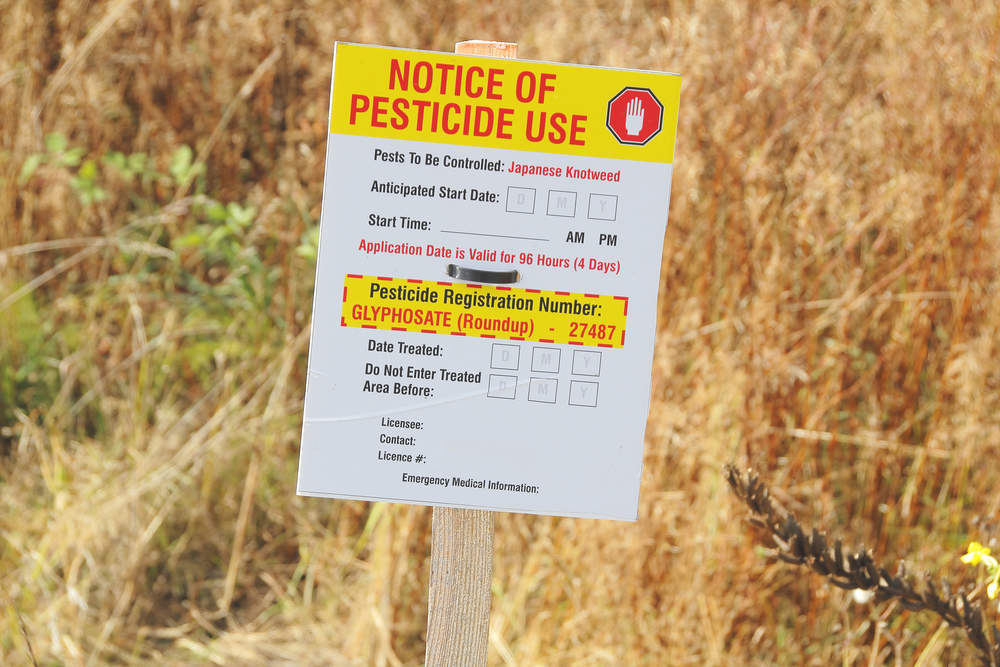 The great Glyphosate debate — should the pesticide be used?