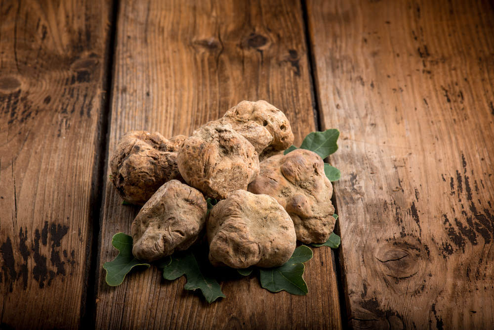 truffle prices - verdict