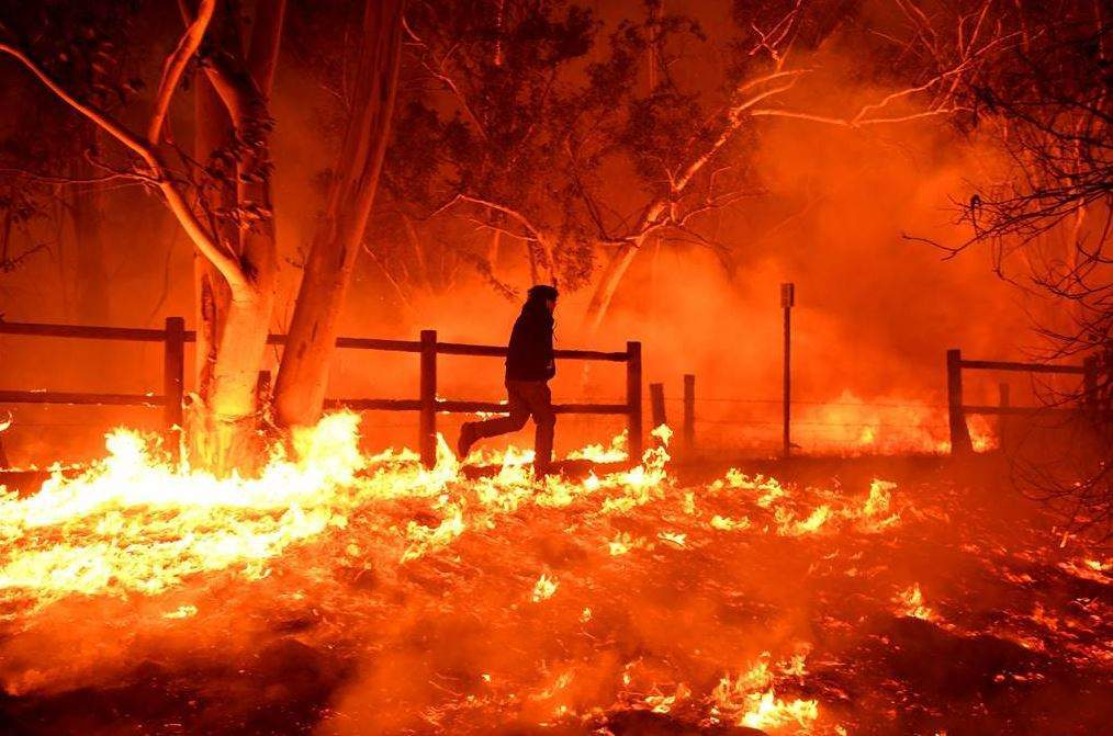 wildfires in california - Verdict