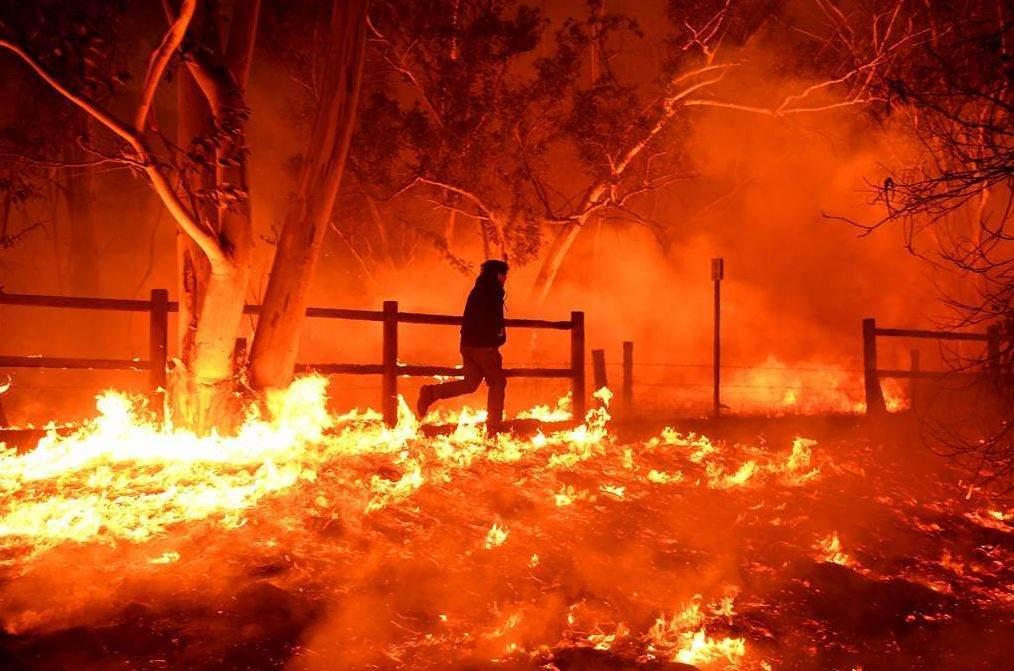 wildfires in california - Verdict