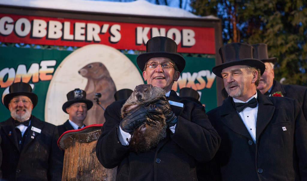 weather Punxsutawny Phil groundhog