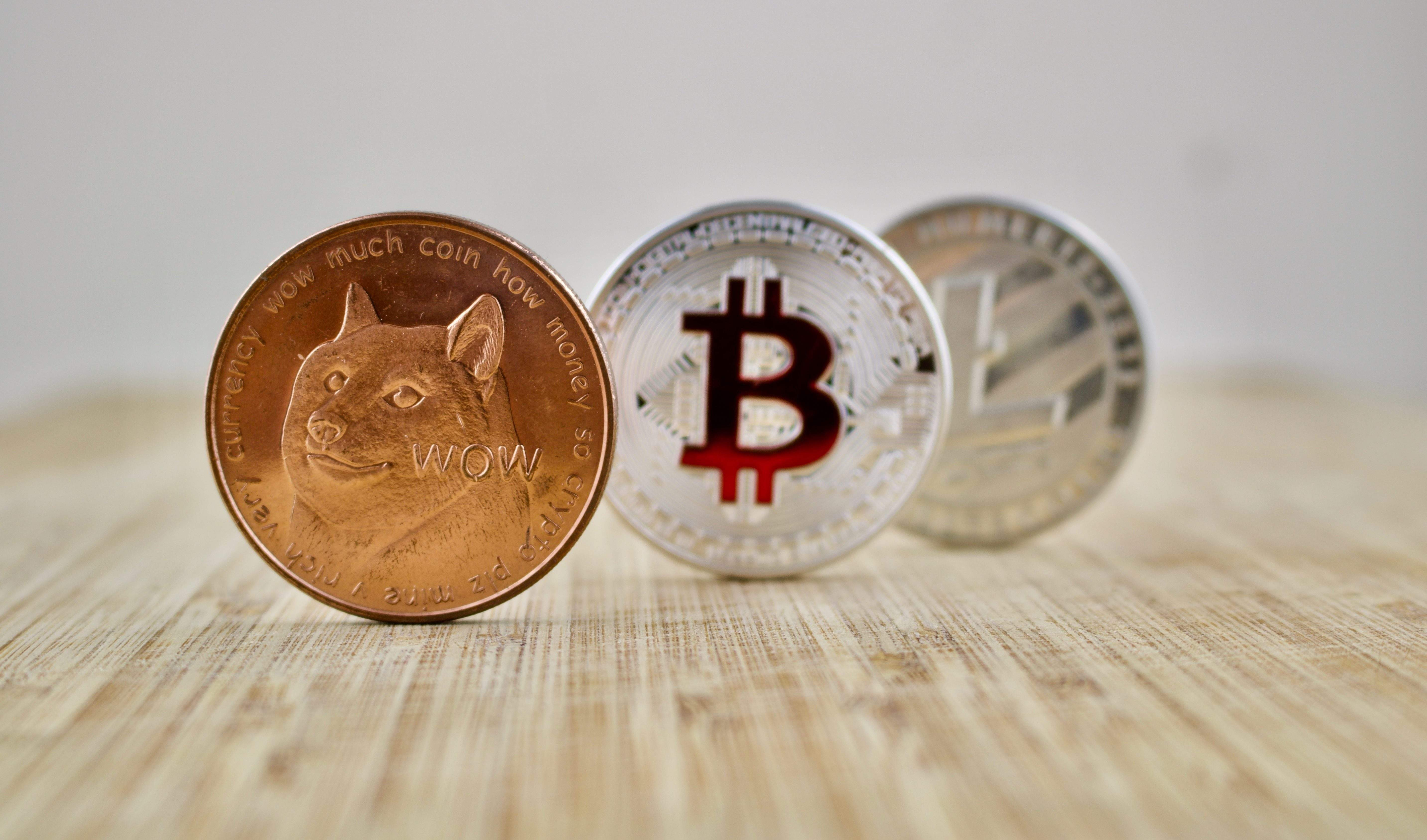 Could these strange alternatives to bitcoin be the next Dogecoin?