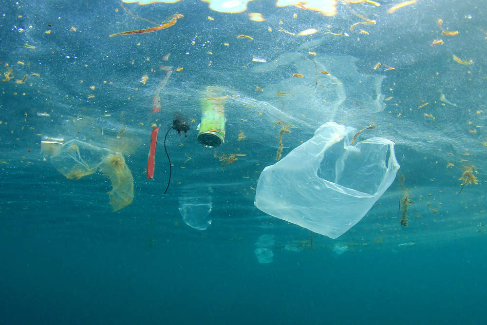plastic waste in ocean - verdict