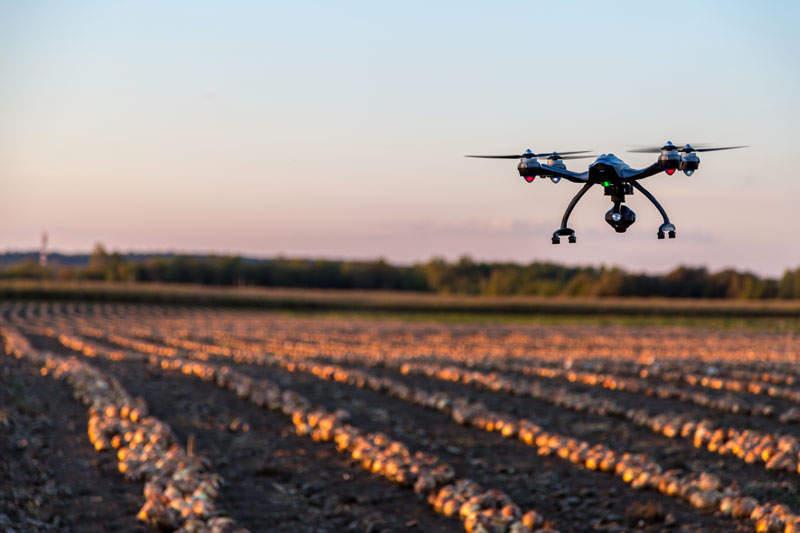 Agriculture 4.0 in Australia