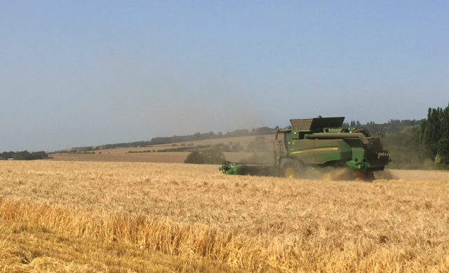 Grain to glass - Verdict