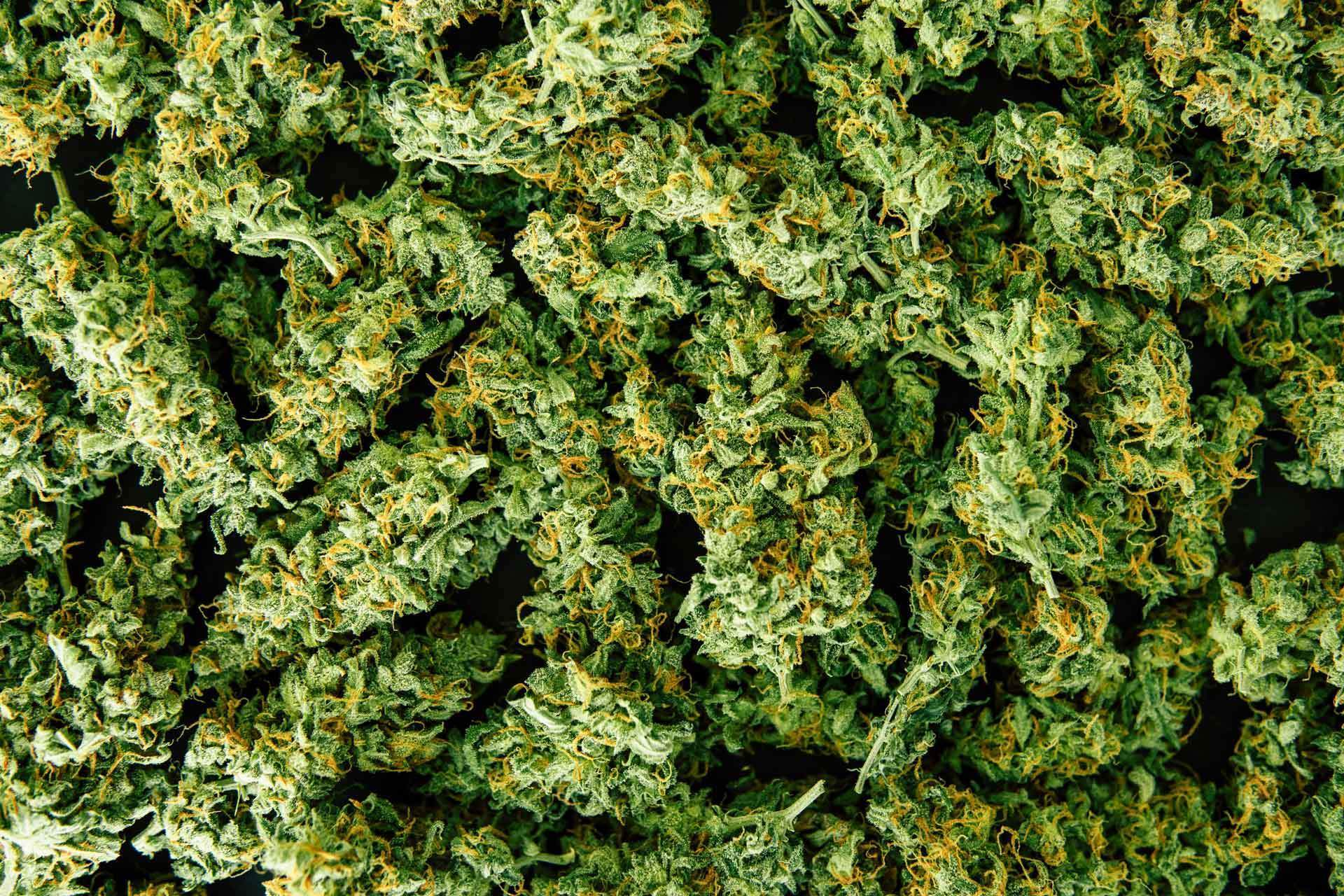 Cannabis branding: Marketing an industry from the ground up