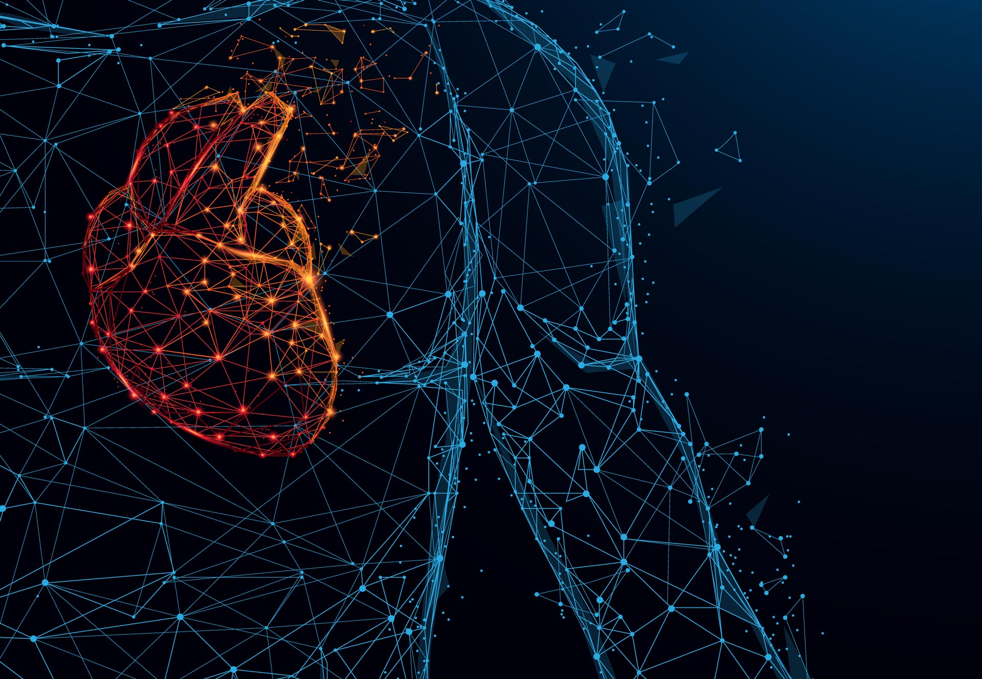 AI tool accurately detects heart failure from a single heartbeat