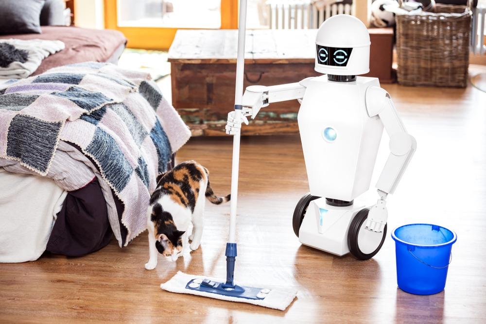 Domestic robots 2019
