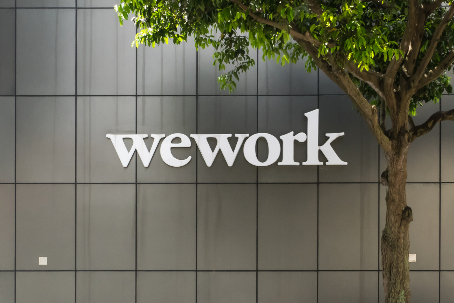 "WeWork releases ""courageous"" IPO prospectus as Uber hits all-time low"
