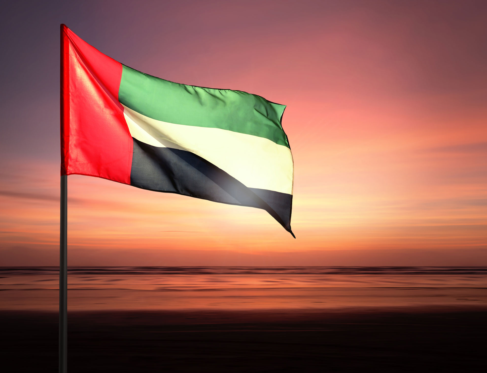 """Record-breaking solar project cements UAE as """"leading player"""" in renewables"""