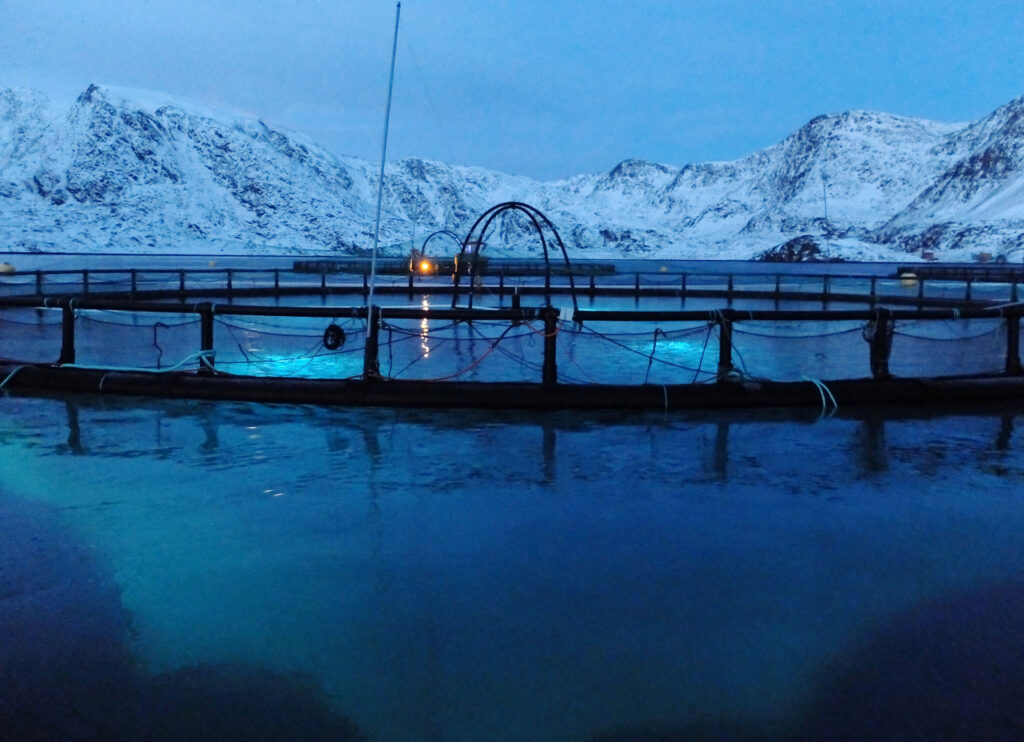 A light recipe for the future of fish farming