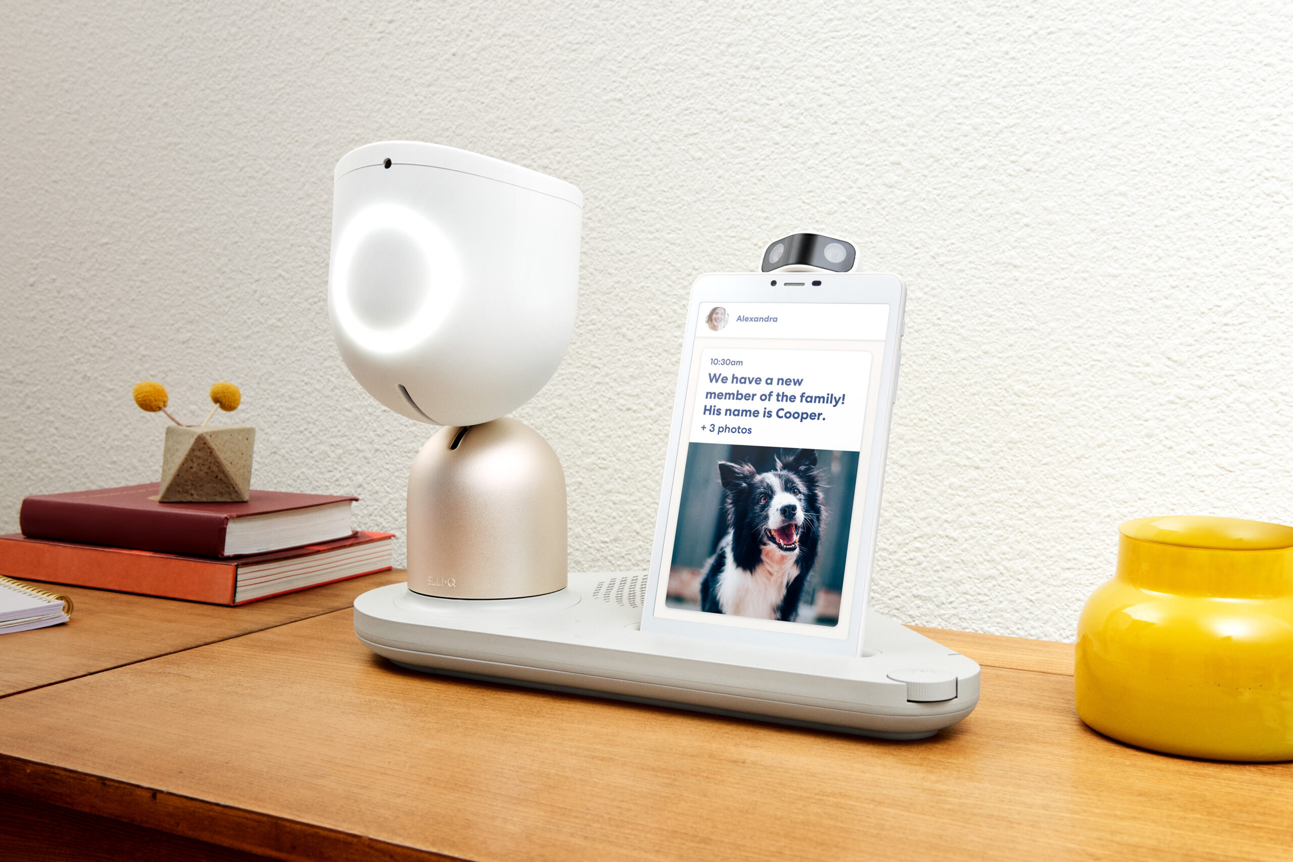 Bedside manner: These robots want to know how we are today