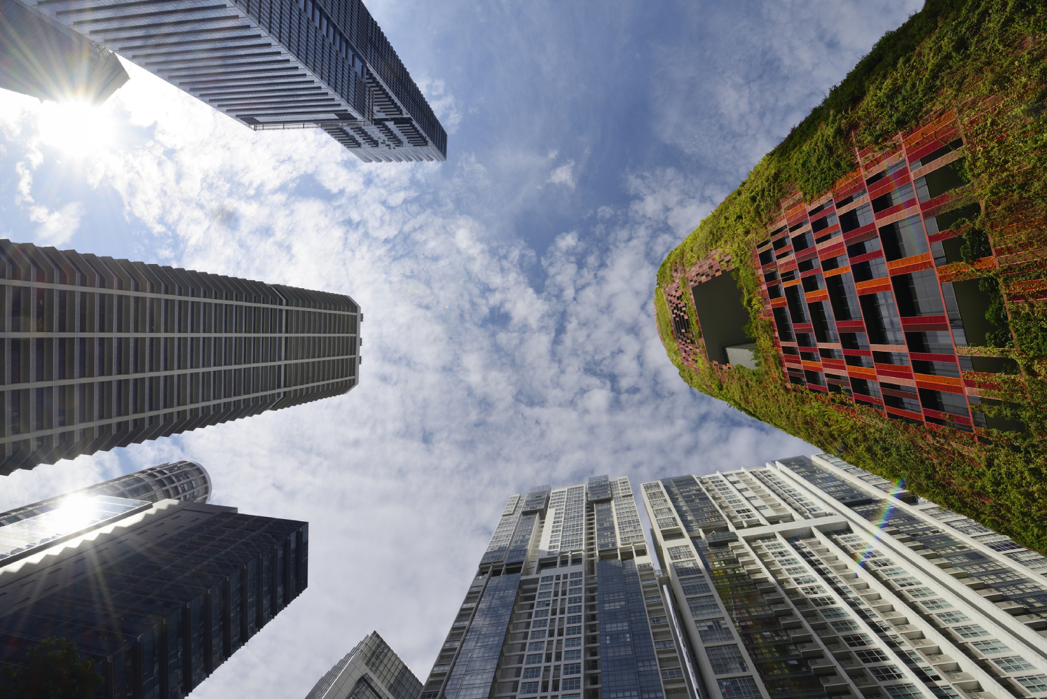 On the grid: The one smart tech driving green city evolution